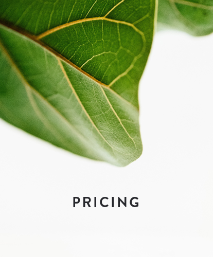 Tides Counseling Pricing Page